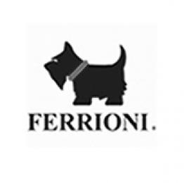 Ferrioni Grupo ID Soft